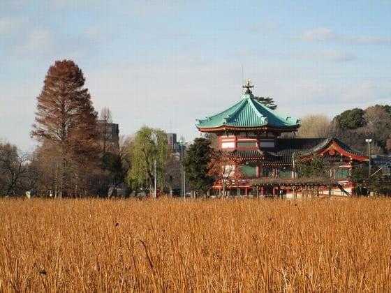 不忍池弁天堂(Bentendō)